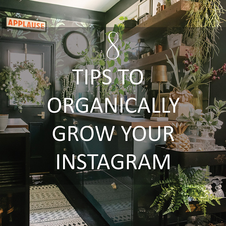 8-tips-organically-grow-instagram