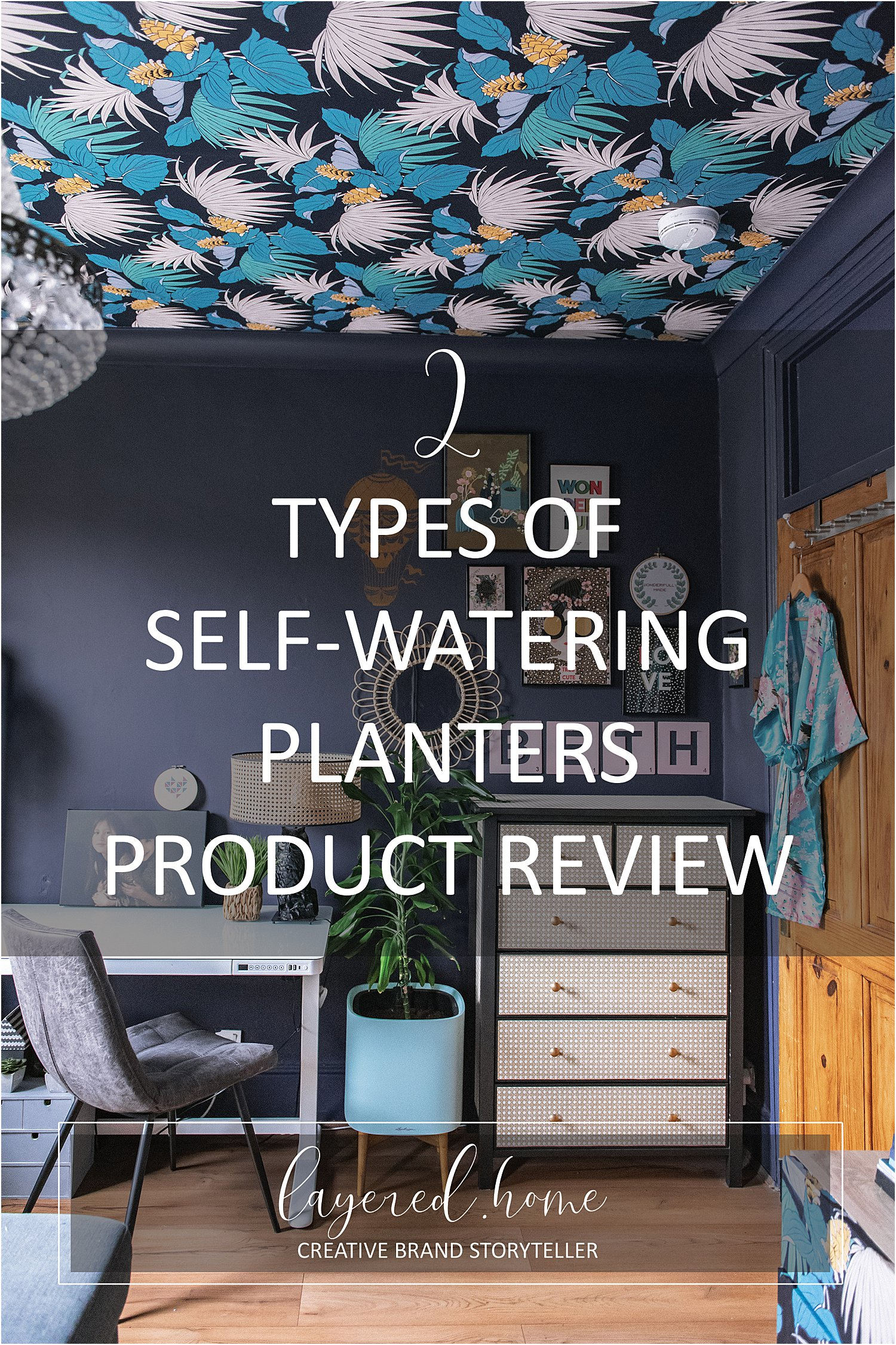 2-types-self-watering-planters-lechuza-pon-product-review